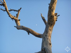 Bryce Canyon (34)_lzn