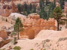 Bryce Canyon (39)_lzn