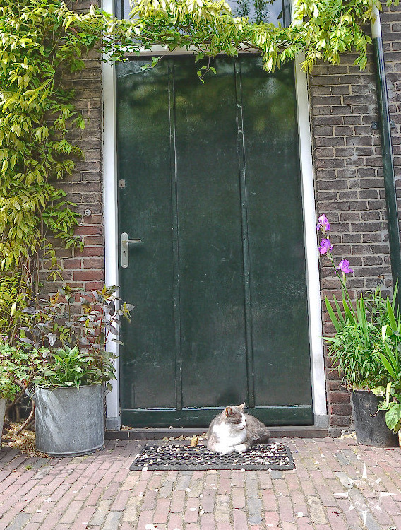 Haarlem (25)